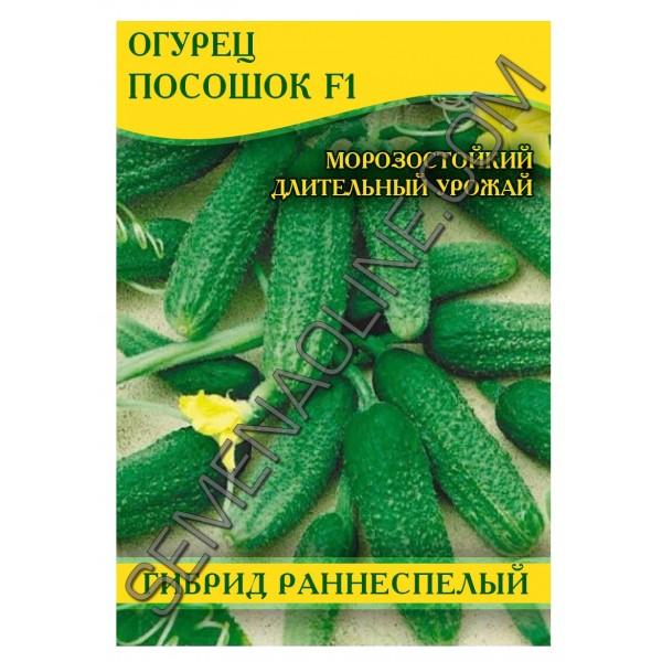 Насіння огірка Ціпок F1, 0,5 кг