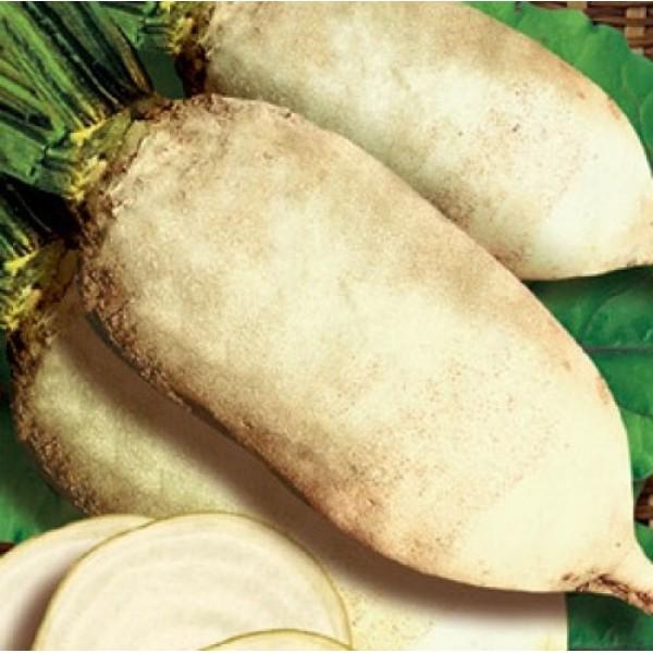 Семена свеклы кормовая Центаур Поли белый, 1кг