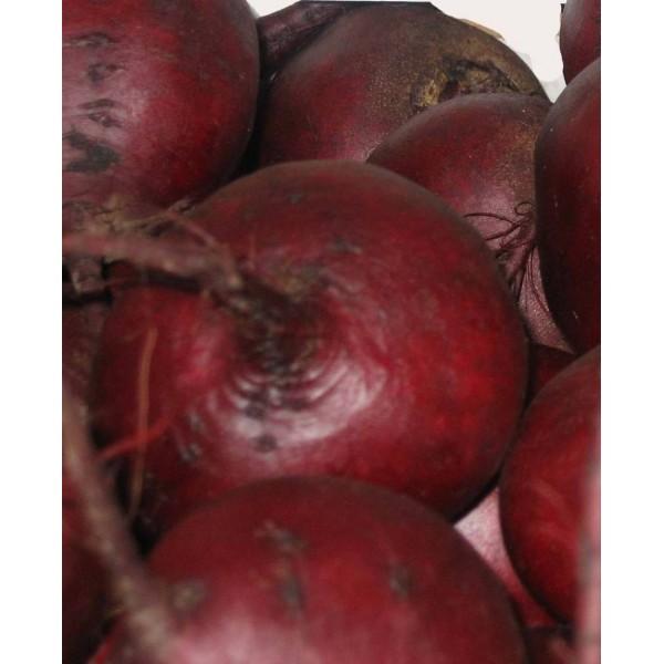 Семена свеклы столовая Ноховский, 0,5кг