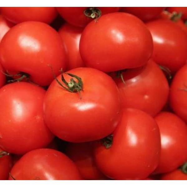 Семена томата Волгоградский 323, 0,5кг