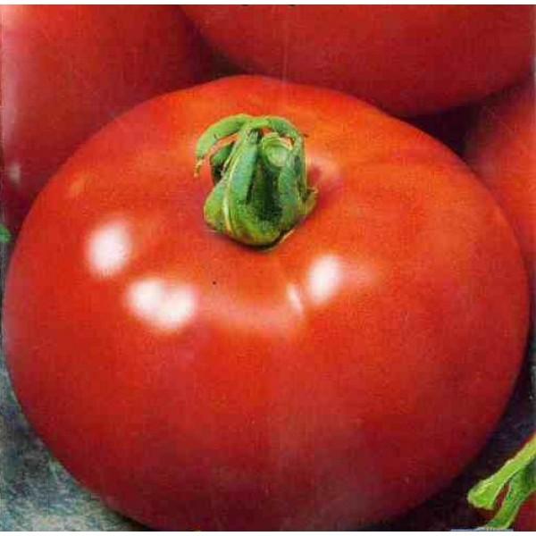 Семена томата Витязь, 0,5кг