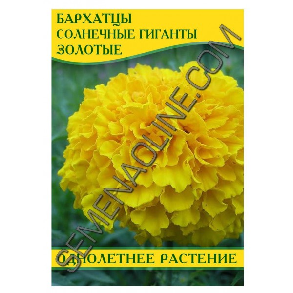 Семена бархатцев Солнечные гиганты Золотые, 50г