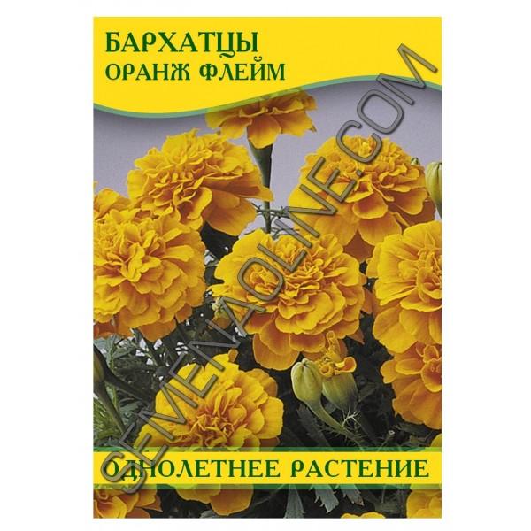 Семена бархатцев Оранж Флейм, 0,5 кг
