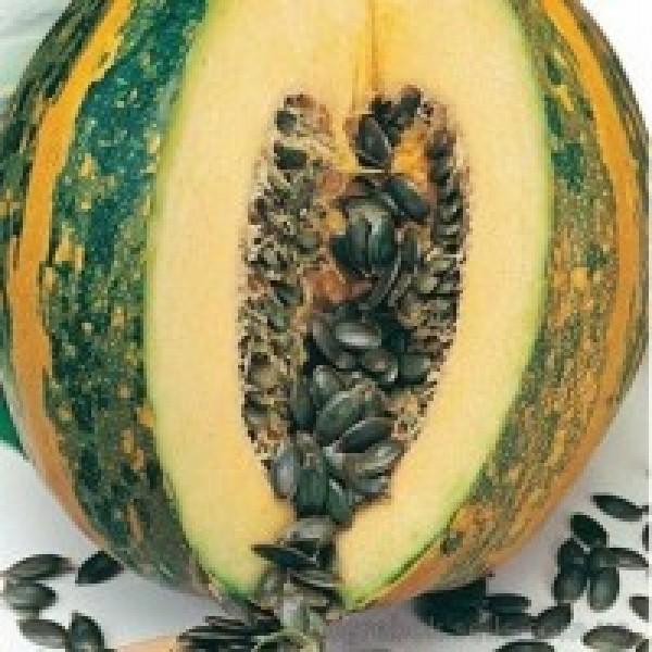 Семена тыквы Голосемянная, 100г